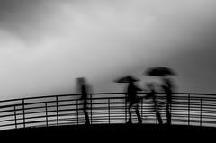 Sous l'orage (PaxaMik) Tags: storm rain clouds umbrella noir noiretblanc silhouettes pluie orage parapluie marcher n§b cielnuageux épure silhouettefloue