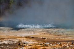 Thermal activity. (dicktay2000) Tags: yellowstone richardtaylor usa wyoming 20060911img1180