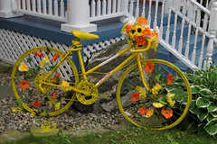 Yellow bicycle in Aylmer (now Gatineau), Quebec (Ullysses) Tags: summer canada quebec gatineau t aylmer