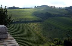Offida, Aussicht von Santa Maria della Rocca (HEN-Magonza) Tags: italien italy nature landscape italia natur landschaft the marches lemarche offida diemarken