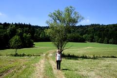 Hike from Maibrunn to Klingldorf, Kolmberg, Ahornwies, Hinterwies, St. Bernard and back to Maibrunn (onno de wit) Tags: germany bayern deutschland annemarie danube duitsland donau bayerischerwald beieren stenglmar sanktenglmar beiersewoud maibrunn bavarianwoods
