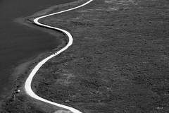 road | Lej da Champfr (Tobia Scandolara) Tags: scenery road roads strade strada carretera sentiero champfer silvaplana engadina engiadina graubunden svizzera switzerland green zigzag