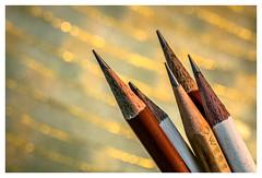 Pencils #PPEP [ #Explored October 10, 2016 ] (lamiadlamai) Tags: macromondays ppep pencils gold golden bokeh