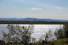 Mackenzie Delta Aklavik (lmainjohnson7) Tags: river delta mackenziedelta arctic northwestterritories aklavik richardsonmountains summer