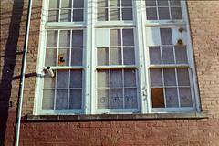Portland, Oregon (A Screaming Comes Across the Sky) Tags: portland oregon film analog analogue 35mm pentax smc takumar kodak gold 200 emulsion
