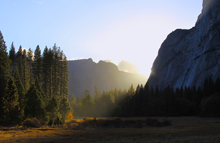 Last Light in the Meadow: Yosemite National Park