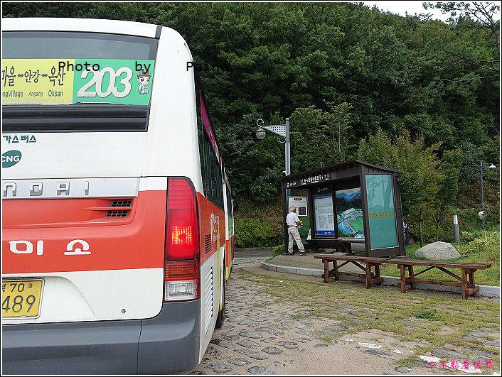 慶州良洞村 (5).JPG