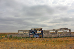 Cat in the city (evgeny_muluk) Tags: streetart abstract art graffiti artist abstractart contemporaryart modernart wallart artsy graff aerosolart sprayart russianart  saratov  muluk streetpiece  streetisart spraydaily