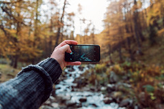 iPhone Vs Forest (Guillaume Gilles Photography) Tags: trip trees light france cold apple forest alpes lens french landscape amazing nikon wide nikkor versus d610 iphone6