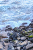 Santa Cruz beach (dalecruse) Tags: lightroom scphoto santacruz california beach water sea seaside seascape outside outdoor outdoors flickr