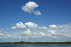 DSC_0077-a23 (stumbleon) Tags: california usa skyscape landscape nikon delta nikond70s farmland dslr cloudscape peatland sanjoaquincounty sanjoaquinriverdelta sanjoaquincountycalifornia