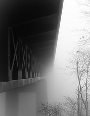 Dense Fog (karo.perez73) Tags: bridge blackandwhite bw white black monochrome blackwhite nikon schwarzweiss brcke d7100