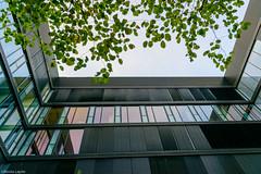 _DSC9104 (Abiola_Lapite) Tags: travel summer architecture germany munich mnchen bayern deutschland bavaria sommer architektur nikkor  d800 2014 2470mmf28g