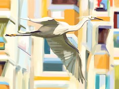 What an Egret!  iPad Painting with Brushes (Plumkin) Tags: urban white building bird nature flying wings digitalart flight beak feathers free blocks elegant float graceful egret fingerpainting glide ipadart plumkin1 plumovelgonne
