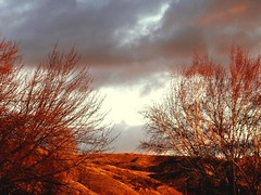 Evening light (EcoSnake) Tags: winter light sunset evening scenery boiseidaho