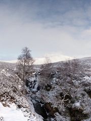 Waterfall (M1279647 E-M1 12mm iso200 f5.6 1_250s) (Mel Stephens) Tags: uk winter panorama snow water landscape scotland waterfall aberdeenshire glenshee olympus panoramic glen pro 28 scape stitched f28 omd 2014 em1 clunie ptgui m43 q4 1240mm mirrorless microfourthirds mzuiko 201412 20141227