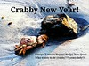 Crabby New Year! ooops,I meant  Happy New Year! Who wants to be crabby?? Crazy lady!