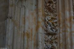 Astronauta en Salamanca (JDchampionsm) Tags: nikon catedral monumentos salamanca astronauta piedra villamayor d3100