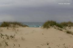 Spain - Cadiz - Tarifa - Bolonia Beach (Marcial Bernabeu) Tags: espaa beach andaluca spain dunes playa andalucia cadiz andalusia cdiz bolonia tarifa bernabeu dunas marcial bernabu