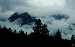 Baviera (20) / Alemania (Ull màgic (+1.250.000 views)) Tags: alps germany tirol fuji bosque nubes alemania montaña muntanya bosc núvols mittenwald baviera boira xt1