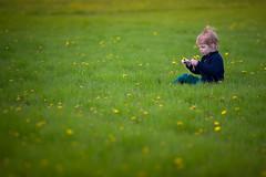 Bouquet (Philocycler) Tags: flower grass spring child boquet dandelions chicagoist chicagolakefront