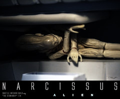 NARCISSUS32 (sith_fire30) Tags: sculpture building art scott miniature big model allen action alien aves ripley shuttle figure beast custom dayton diorama giger narcissus chap hrgiger prometheus sculpt styrene ridley xenomorph nostromo fixit sithfire30 covneant
