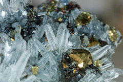 Quartz, Chalcopyrite and Sphalerite, Krushev Dol mine, Rhodope Mts, Bulgaria (rmk2112rmk) Tags: macro bulgaria minerals geology quartz chalcopyrite sphalerite rhodopemts krushevdolmine chalcopyriteandsphalerite