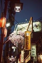 Warm Feels (M.Boubou) Tags: street city travel light japan night tokyo walk exploring culture sakura japenese