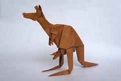 Kangaroo - Gen Hagiwara (Juanfran Carrillo) Tags: paper origami kangaroo papel papiroflexia canguro
