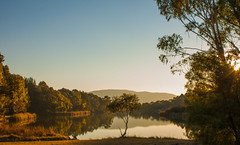 Bonython Pond, Canberra (Rachael McCann) Tags: autumn trees lake reflection fall water landscape pond australia canberra serene mountainrange