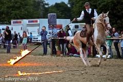 Pintos_Equitana_2016-1076 (tokerpress) Tags: messe pferde shou pintos tokerpress alexandertoker equitanaopenair ctokerpress2016 gestütgoldenepintos