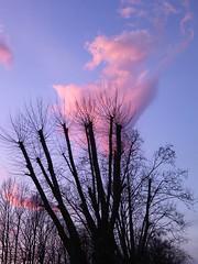 nuvola rosa (Napocesco) Tags: nwn
