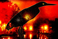 THE GUARDIAN OF THE LAKE. (Viktor Manuel 990) Tags: lake bird mxico night lago noche surrealism digitalart brightcolors pajaro veracruz artedigital surrealismo jalapa victormanuelgmezg