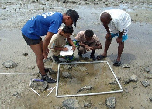 3 recruitment of Junior Ecoguard and Conservation Ambassador and seagrass monitoring