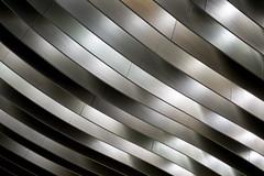 Shining ribs (N808PV) Tags: 21 terminal ceiling ribs iv shining rx100