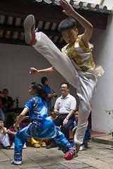 A wushu performance in Penang (Bertrand Linet) Tags: wushu penang malaysia martialart kidmalaysia