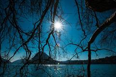 Sun's rays (petia.balabanova(tnx for +1.000.000 views)) Tags: travel blue trees light sky sun lake color nature landscape switzerland tranquility calm rays svizzera lugano montains 1735mm nikond800