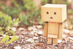 Adventures of Danbo (katiegodowski_photography) Tags: nature outside toys photography creative amateur amateurs danbo japnese danboard