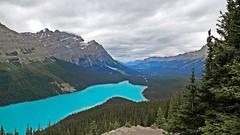 Peyto Lake, Bow Summit, Banff National Park, Alberta Canada (renedrivers) Tags: ppeytolake bowsummit banffnationalpark albertacanada rchan415 renedrivers canada alberta rockymountain nature landscapes