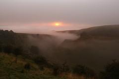 Sunrise At Cressbrook Dale (Derbyshire Harrier) Tags: cressbrookdale sunrise mist fog limestone inversion derbyshire whitepeak peakdistrict peakpark naturalengland reserve dawn 2016 petersstone karst hawthorn