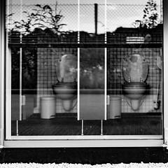 Please close the door (Traveller_40) Tags: pwm photowalkingmunich:event=80 toilette walkwith monochrome bw restroom loo sitz window fenstr glas reflektion reflection zaun toilet lava lavatory toiletlid toilettendeckel fence noiretblanc