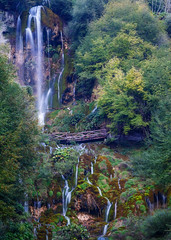 Sopotnica falls (coagator) Tags: sopotnica falls water waterfall green trees forest landscape lovely bridge wooden beauty serbia srbija mountain jadovnik