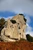 DSC_0122 (degeronimovincenzo) Tags: megaliths megaliti nebrodi agrimusco ilbabbuino megalitidellagrimusco roccemegalitiche