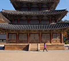 Temple Walker (Mondmann) Tags: history architecture walking temple asia religion korea tourist walker southkorea buddhisttemple beopjusa rok eastasia republicofkorea beopjusatemple mondmann fujifilmx100s