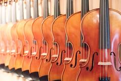 Violins (DWO630) Tags: nikon musical violin instrument d750 24120