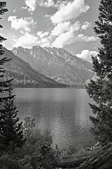 Teton Lakeside (Explore) (Don Mosher Photography) Tags: