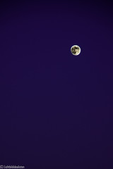 purple&moon (Lichtbildidealisten.) Tags: blue sky moon beautiful nice purple follow hour tenerife picoftheday cuteeyes