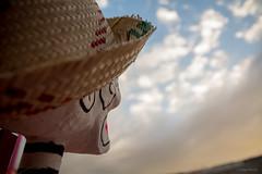 Dia de Muertos (diegomdec) Tags: travel mexico nikon mexicocity sigma victoria altar guinnessrecord altardemuertos sigma1770 recordguinness nikond7100