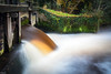 Locks at Dinkel river, the Netherlands (PJAG83) Tags: longexposure autumn water river waterfall smooth locks twente silky slowshutterspeed dinkel singraven d7100 sigma1750mmf28exosdchsm