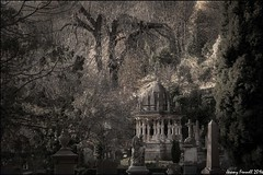 Arno's Vale Cemetery (zolaczakl) Tags: november trees sculpture cemetery grave graveyard bristol victorian gravestones 2014 arnosvalecemetery arnosvale brislington nikond7100 photographybyjeremyfennell bristolinmonochrome gradeiiregistered